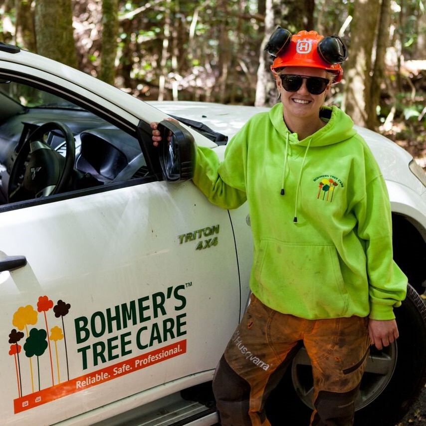 Lauren Bohmer's Tree Care