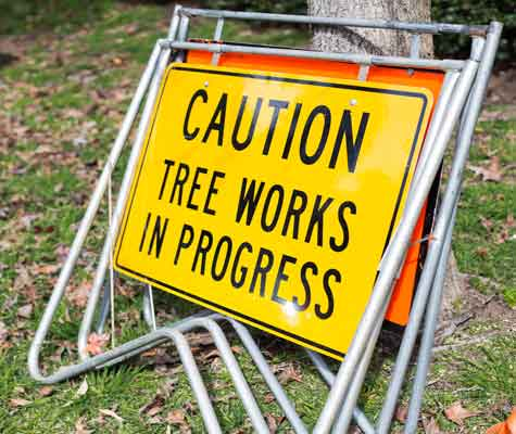 tree works sign Bohmer's Tree Care